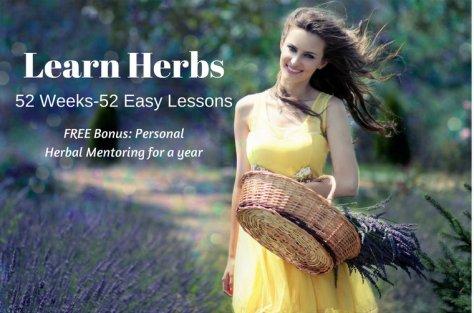 Learn Herbs