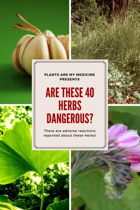 Plants are my medicine presents (1)