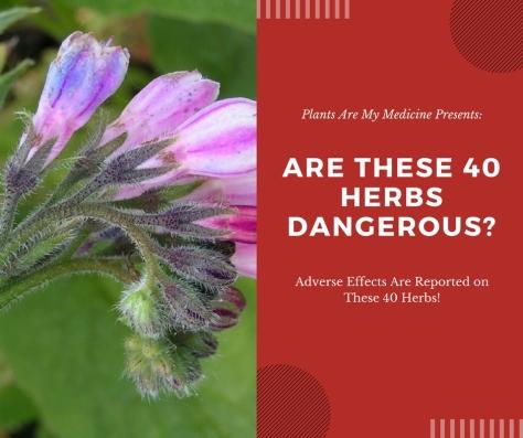 Plants Are My Medicine Presents-